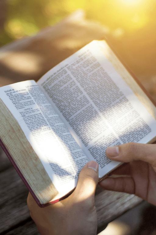bible_3M